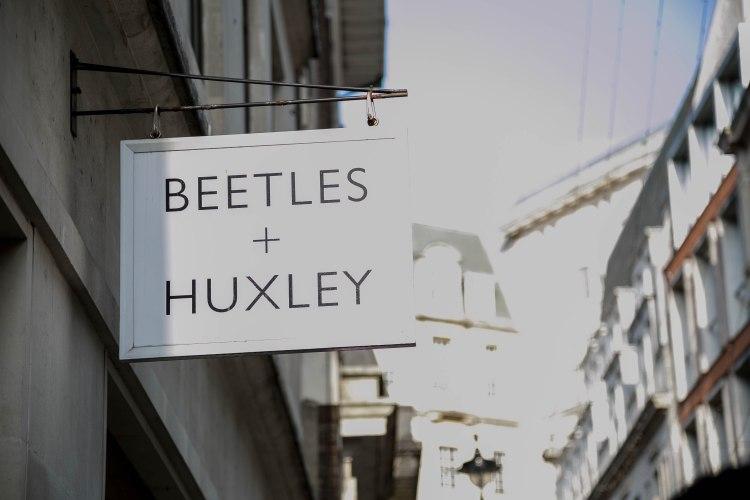 beetles1