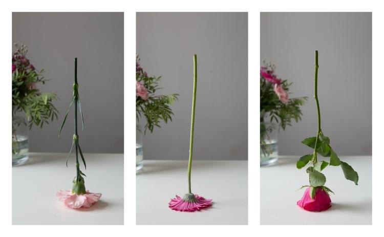 upside flower